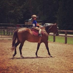 houston horse show