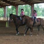 lease horses