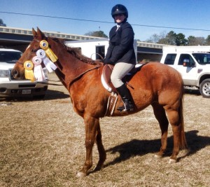 lesson horse montgomery texas